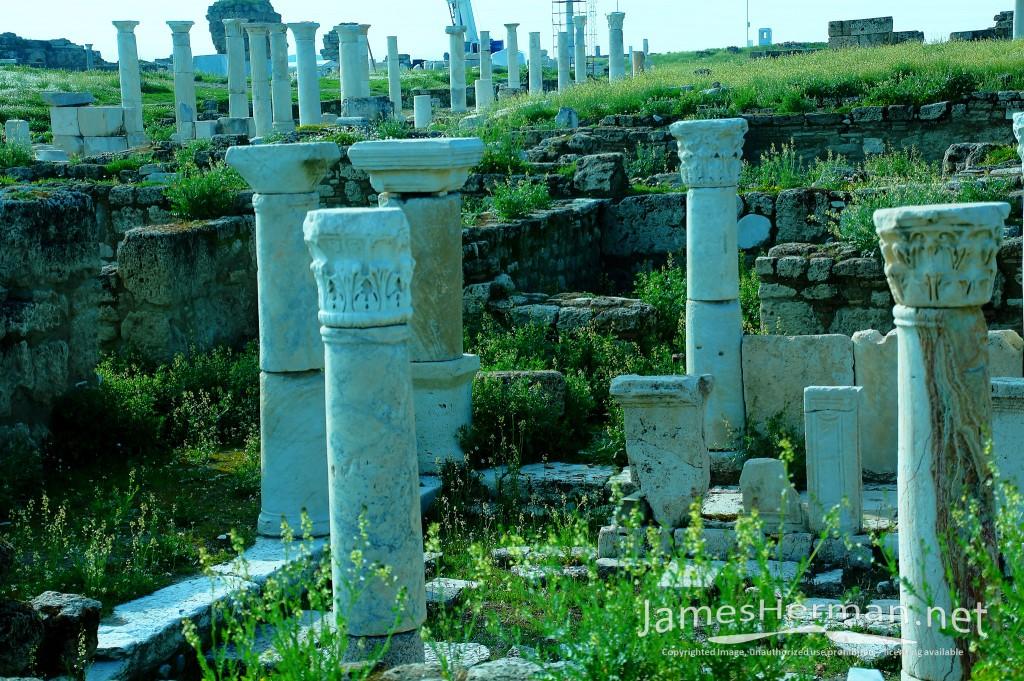 Laodicea on the Lycus Again 2015