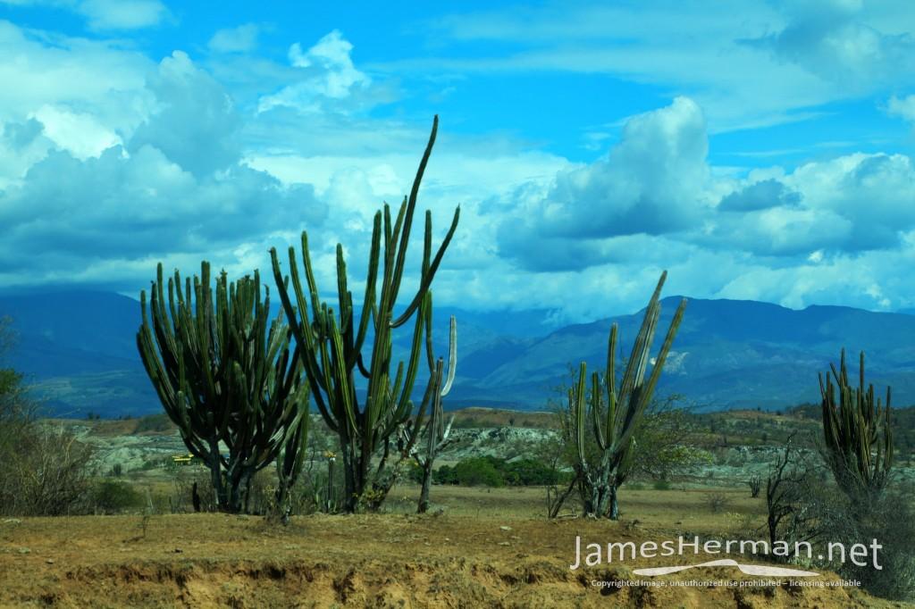 Neiva and Tatacoa Desert 2014