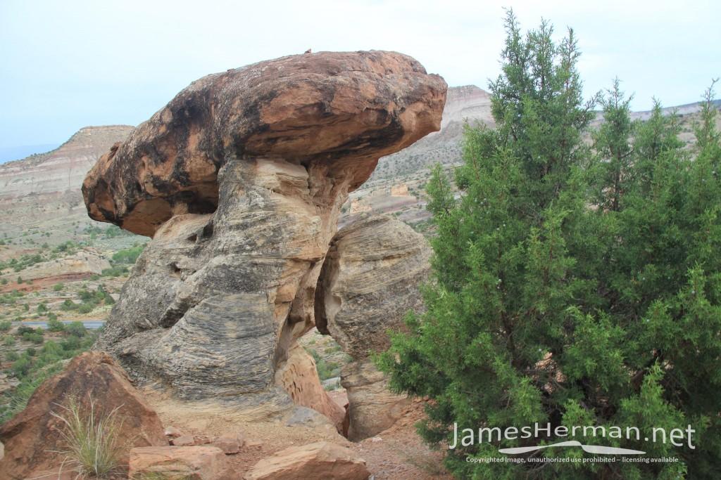 Grand Junction 2011