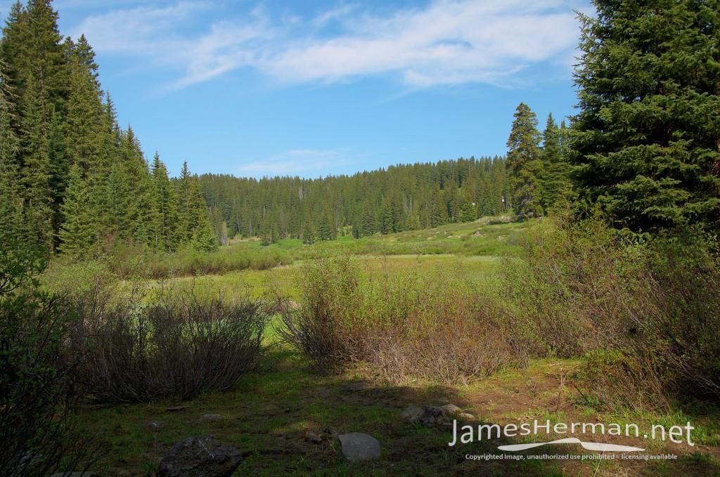 Colorado-June-2016--0076_7_8.jpg