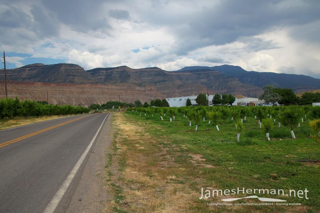 Colorado-June-2016--0164_5_6.jpg