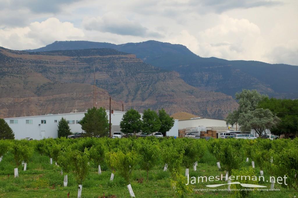 Colorado-June-2016--0167_8_9.jpg