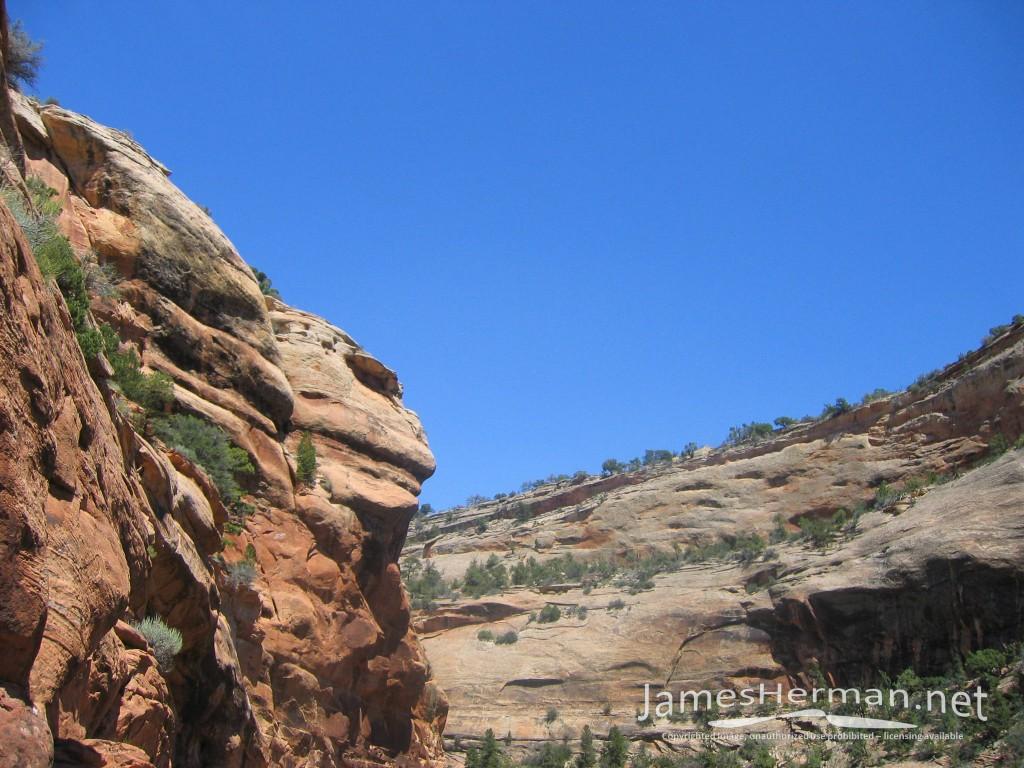 Rough Canyon 2005